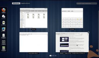 Fineste aperte in Fedora 15 con GNOME3